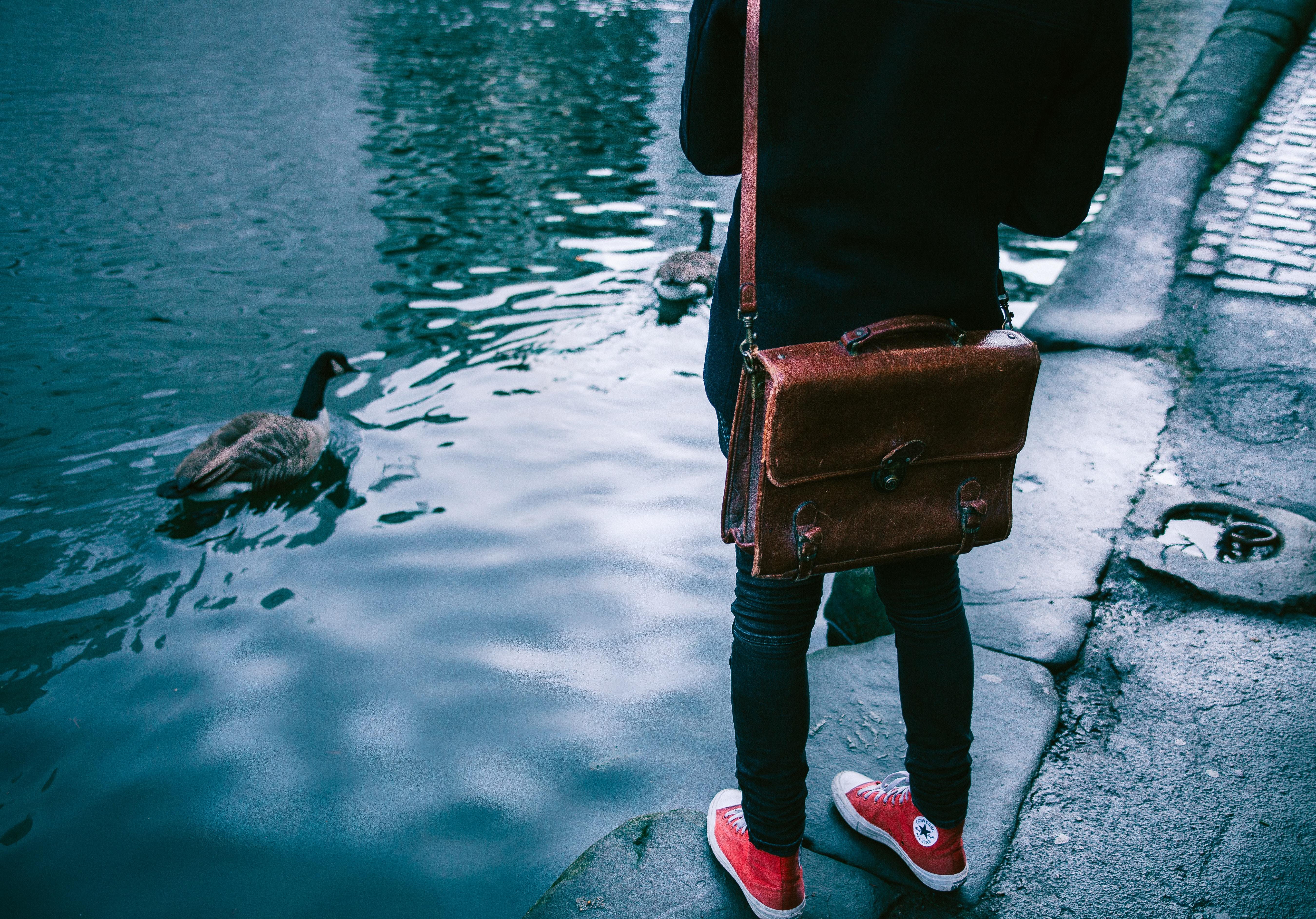 Converse tendencias zapatillas